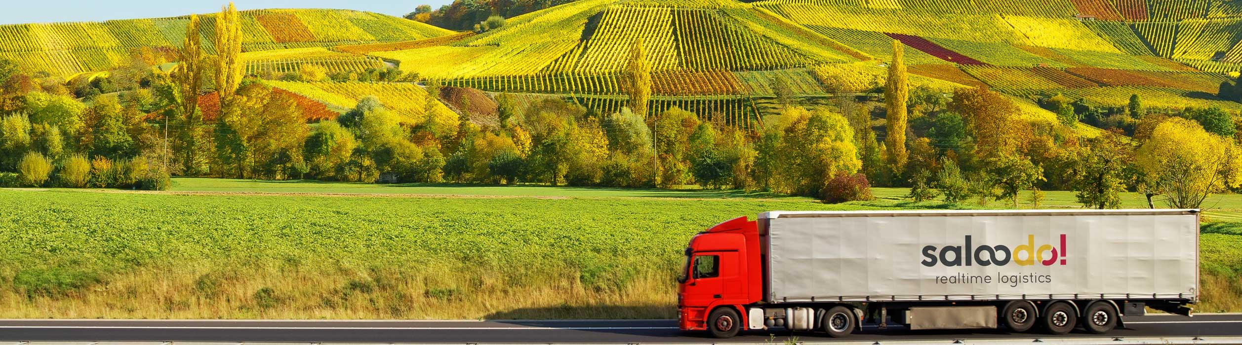 LKW für Weintransport fährt zum Transport von Wein auf einer Straße vor einem Weinberg